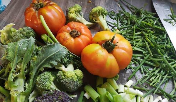 Annies Organic Farm